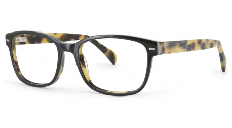 BB6038 [C1 Black/Tort Wood] Frames