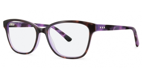 BB6044 [C2 Tort/Purple] Frames