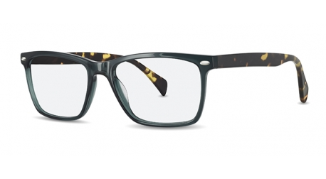 BB6048 [C2 Green Tort] Frames