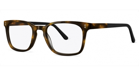 BB6065 [C2 Tort/Black] Frames