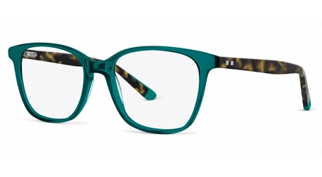 BB6074 [C2 Teal] Frames
