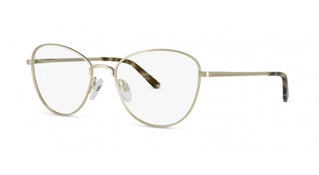 BB6625 [C2 Gold] Frames