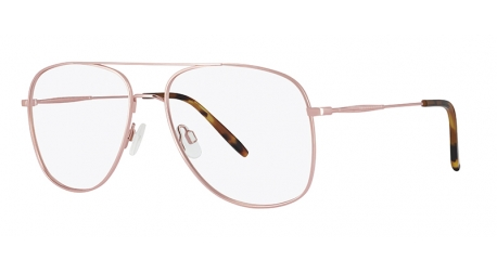 BB6626 [C1 Light Gold] Frames