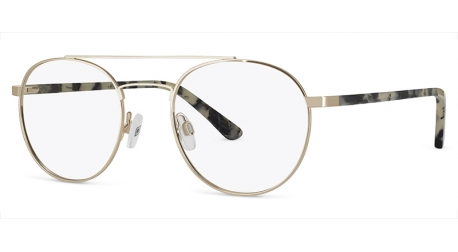 BB6628 [C2 Light Gold] Frames