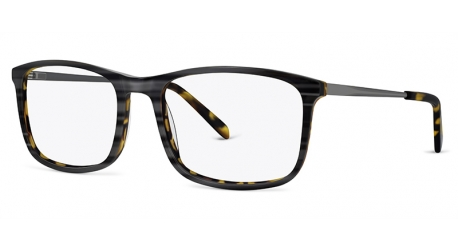 JN8041 [C1 Grey Striation] Frames