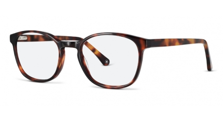 Ashley [C2 Tortoiseshell] Frames