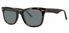 Rock Star Bondi Frames