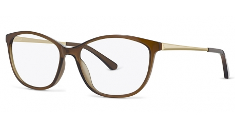 ZP4081 [C1 Brown] Frames